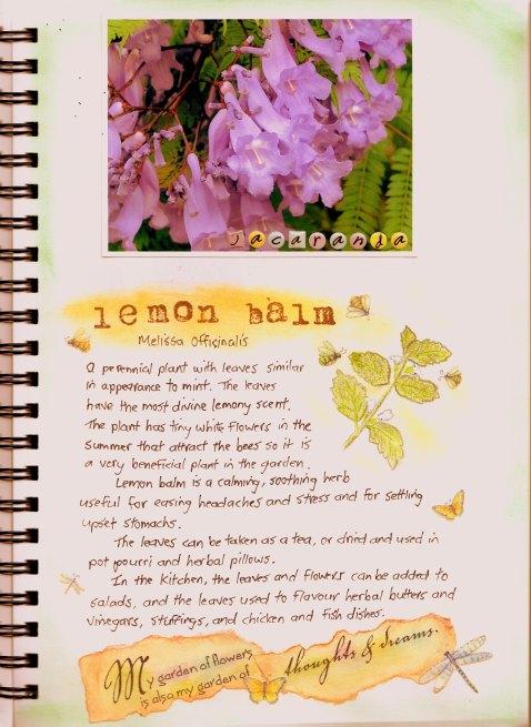 Garden journal December2