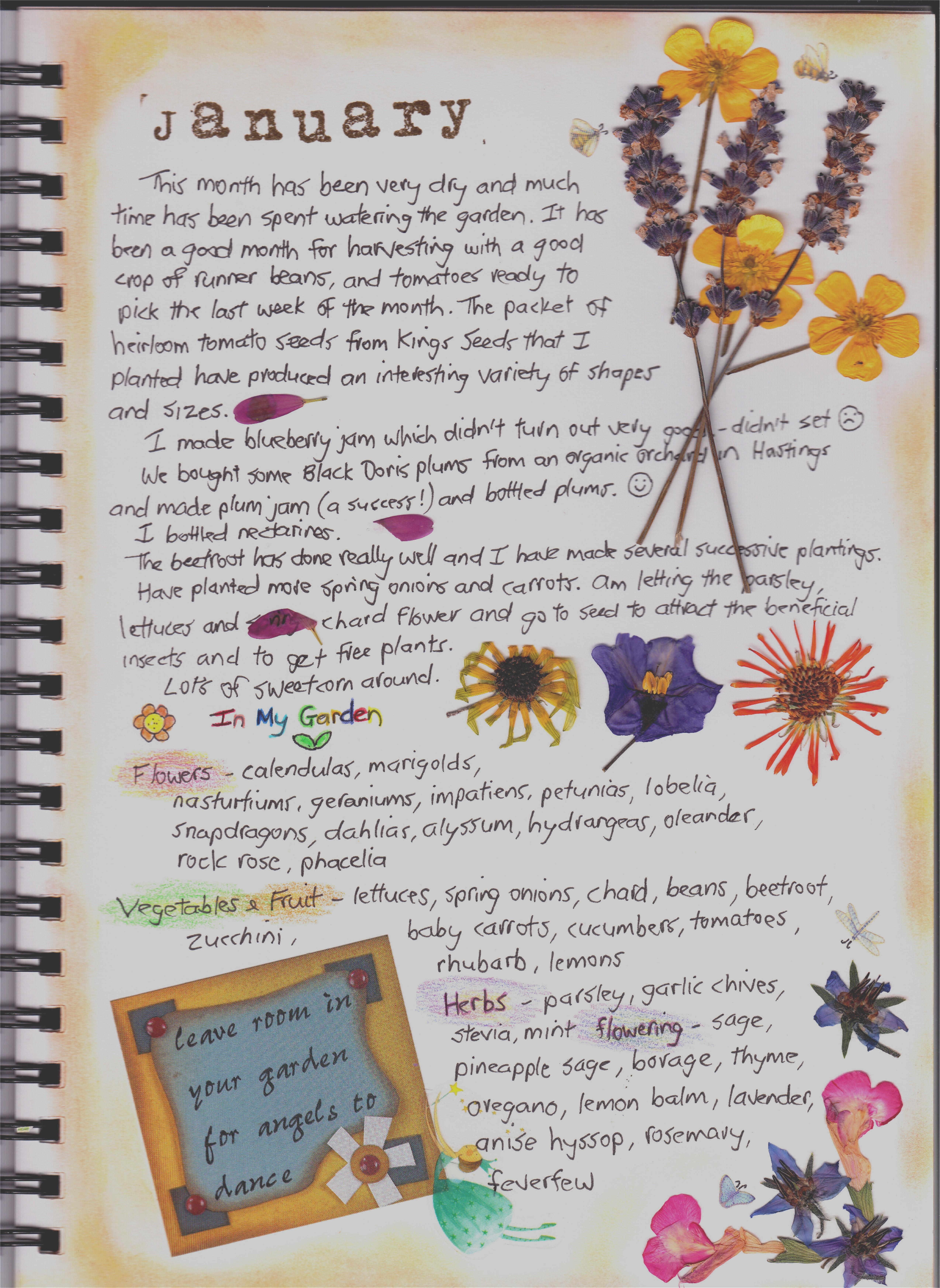 Garden Journal – January – Kristah Price