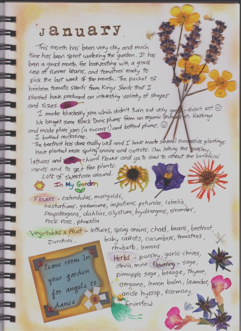 Copy of Garden Journal - January
