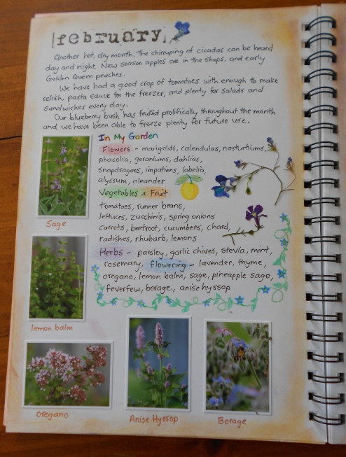 February garden journal