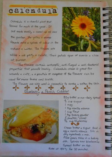 Garden Journal Calendula