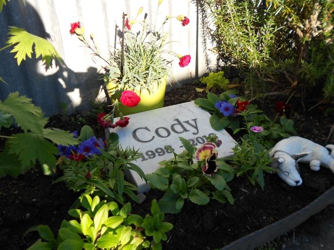 Cody's Garden