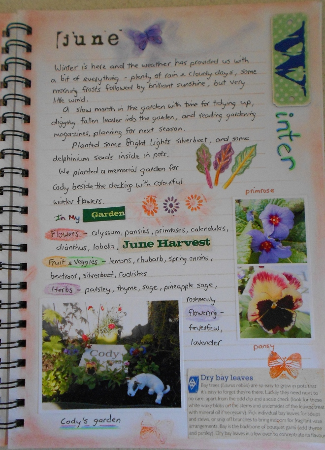 Garden journal - June