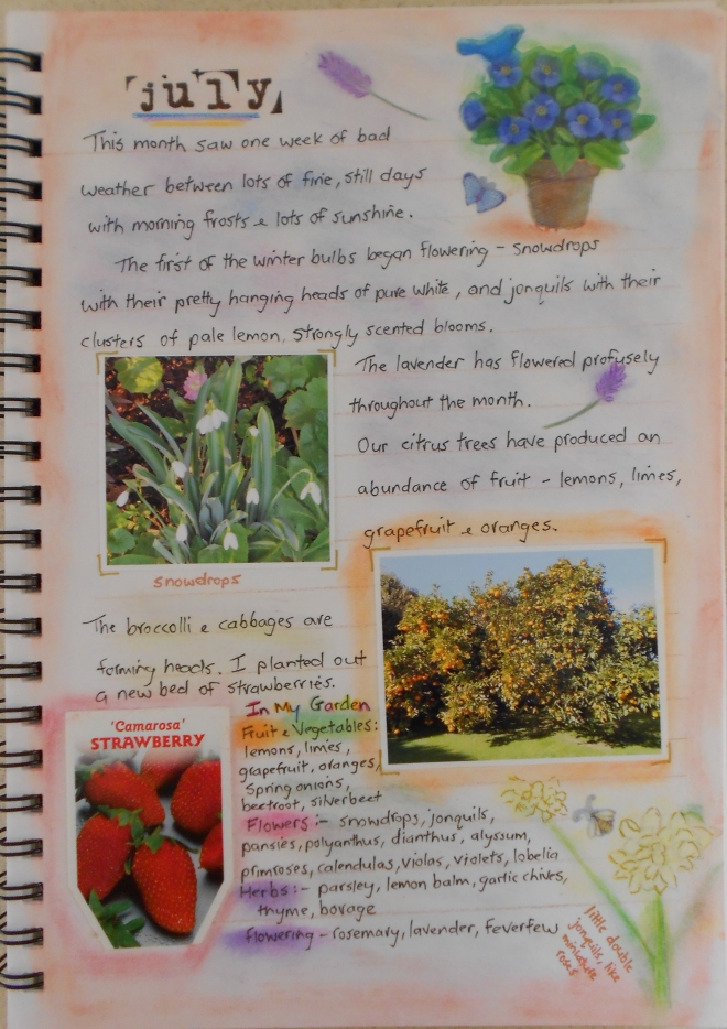 garden journal-July