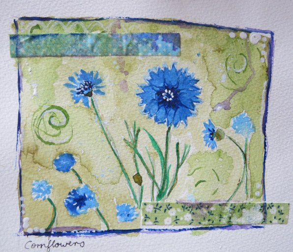 cornflowers
