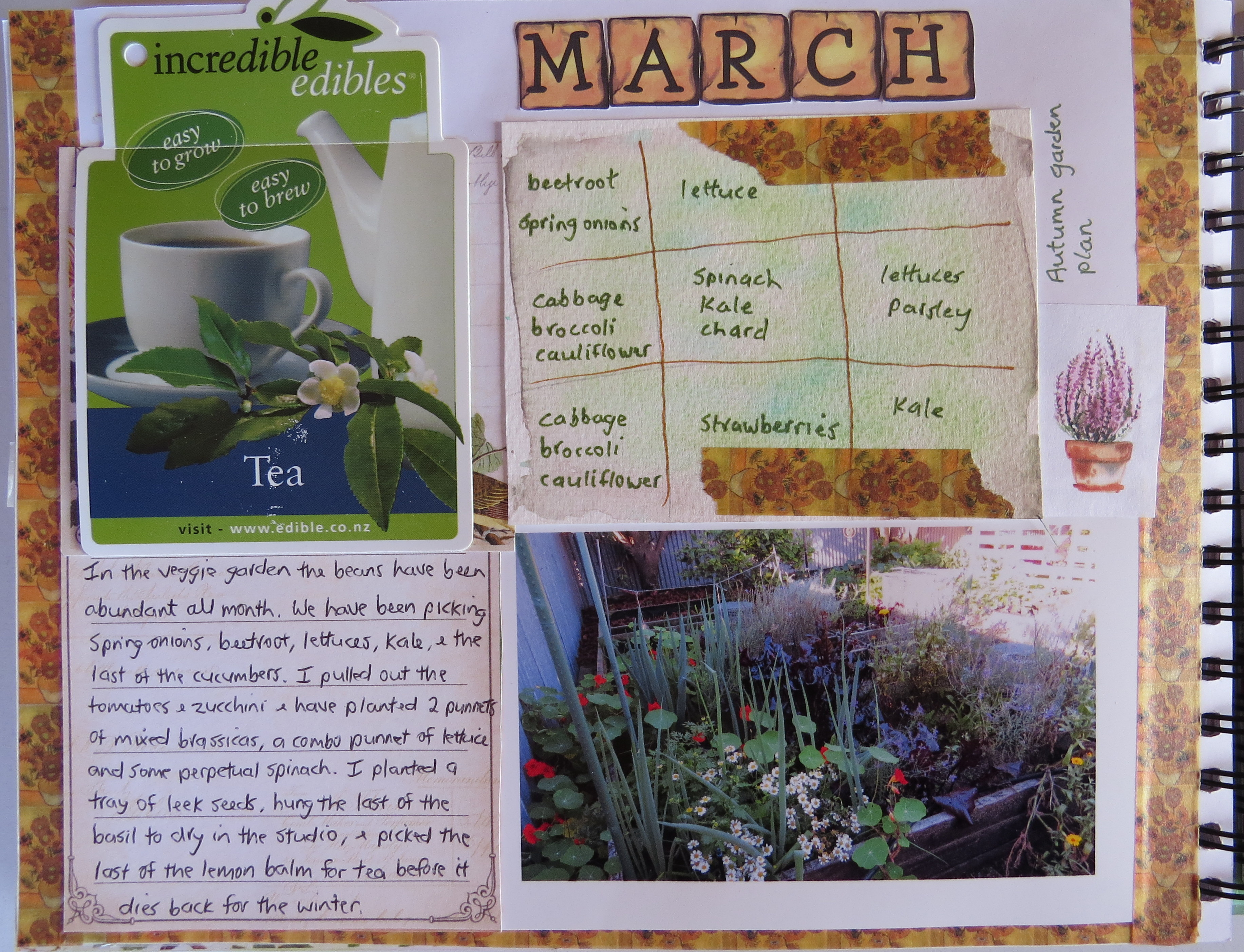 these are my garden journal pages for march and april